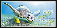 All About Sea Life Wall Calendar 2017