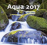 Aqua Wall Calendar 2017