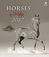Horses Dreaming Wall Calendar 2017