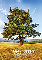 Trees Wall Calendar 2017