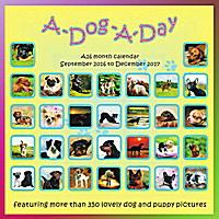 A Dog A Day Wall Calendar 2017