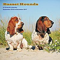 Basset Hounds Wall Calendar 2017