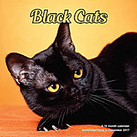 Black Cats Wall Calendar 2017