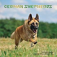 German Shepherds Wall Calendar 2017