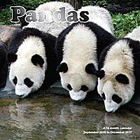 Pandas Wall Calendar 2017