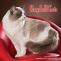 Ragdoll Cats Wall Calendar 2017