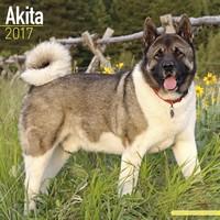 Akita Wall Calendar 2017