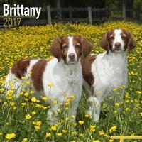 Brittany Wall Calendar 2017