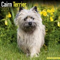 Cairn Terrier Wall Calendar 2017