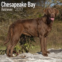 Chesapeake Bay Ret Wall Calendar 2017