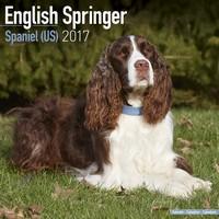 Eng Springer Spaniel (Us) Wall Calendar 2017
