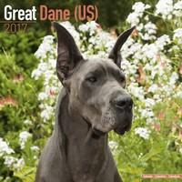 Great Dane (Us) Wall Calendar 2017