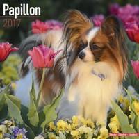 Papillon Wall Calendar 2017