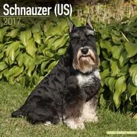Schnauzer (Us) Wall Calendar 2017