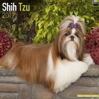 Shih Tzu Wall Calendar 2017