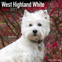 West Highland Terrier Wall Calendar 2017