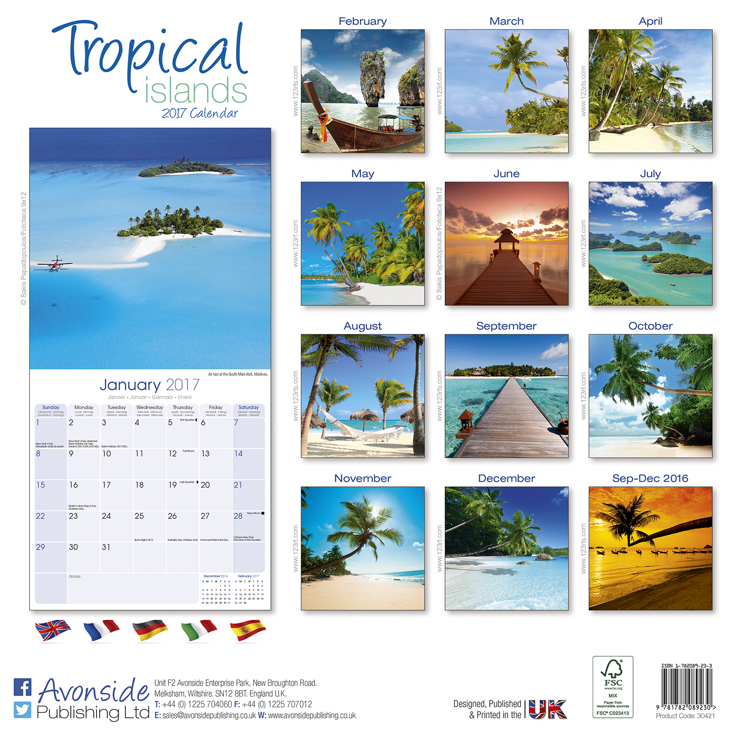 tropical islands calendar 2017 pet prints inc. Black Bedroom Furniture Sets. Home Design Ideas